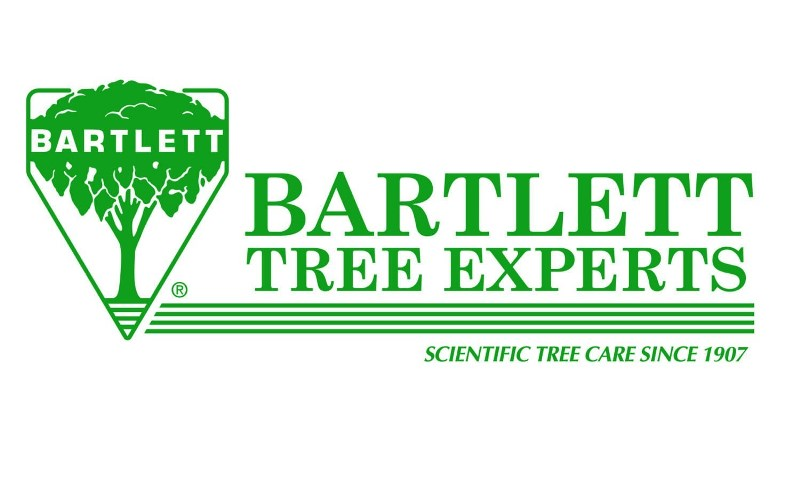 BTE_LOGO_GREEN